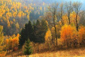 Jesień wDolinie Srebrnika